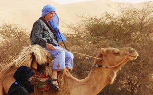 infos zu w stenreisen wandern und kameltrekking in der sahara maghreb nordafrika und arabien. Black Bedroom Furniture Sets. Home Design Ideas
